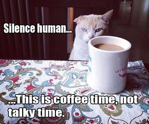 silence human